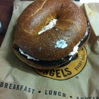 Einstein Bros Bagels - Bagels - San Diego, CA - Yelp