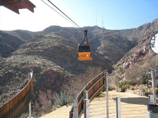 Wyler aerial tramway parques y jardines el paso tx - La hora en el paso texas ...