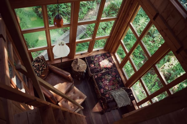 Treehouse Point Bed And Breakfast Rates