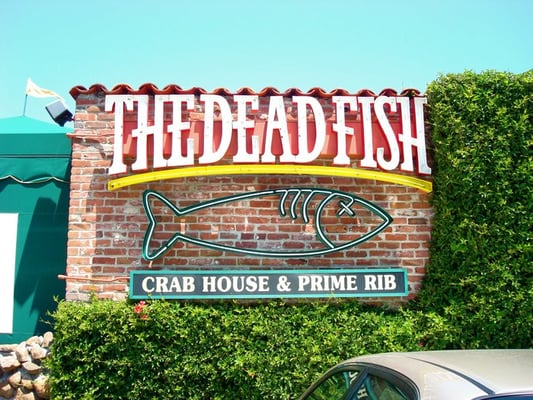 The dead fish 15 restaurants with hilariously for Dead fish restaurant