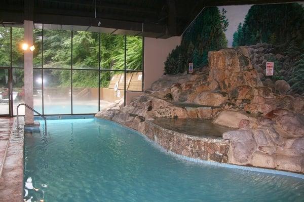 the edgewater at the aquarium hotels gatlinburg tn. Black Bedroom Furniture Sets. Home Design Ideas