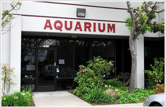 Aquatic Collection Aquarium Pet Stores Hayward Ca