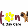 swinton dog training & dy care centre