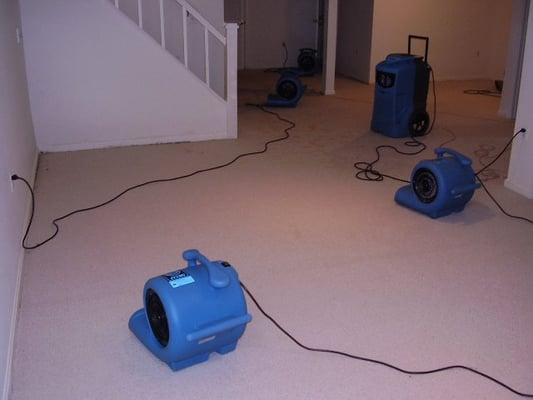 wet basement that we 39 re drying we have a dehumidifier air movers i