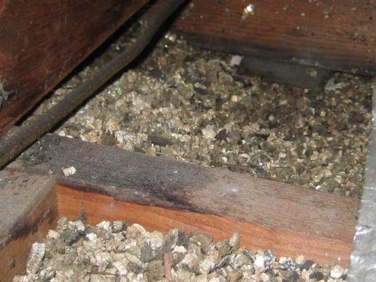 Asbestos vermiculite insulation asbestos for Does sheetrock contain asbestos