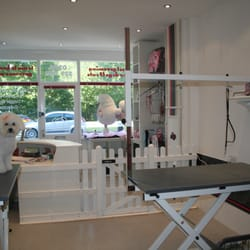open plan grooming room with state of the art latest equipment .