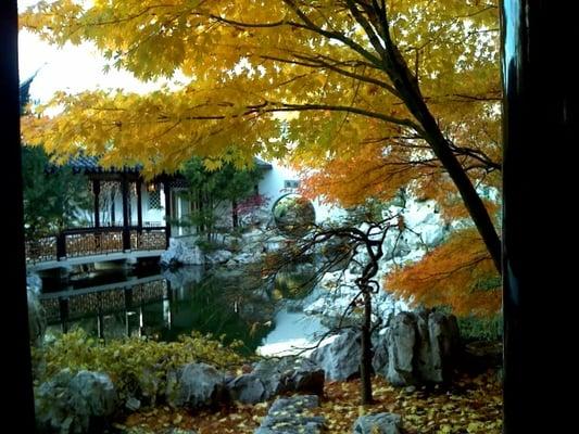 The new york chinese scholar s garden botaniska for 1000 richmond terrace staten island ny