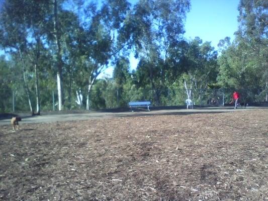 Joslyn Dog Park