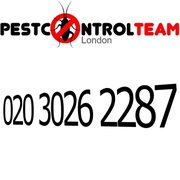 London Pest Control Team, London