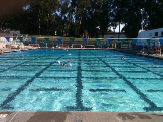 Sinsheimer Pool San Luis Obispo Ca Yelp