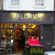 Aflorum, London