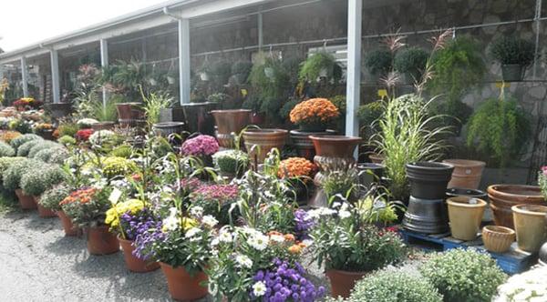 Photos For Lehigh Valley Home Garden Center Yelp