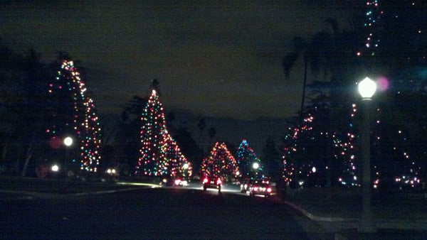 Christmas Lights In Pasadena