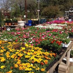 Red Barn Garden Center Nurseries Gardening Austin Tx Yelp