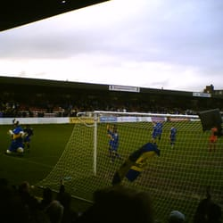 Haydon the Womble (AFC Wimbledon mascot) gets on the pitch for some after match celebrations at Kingsmeadow