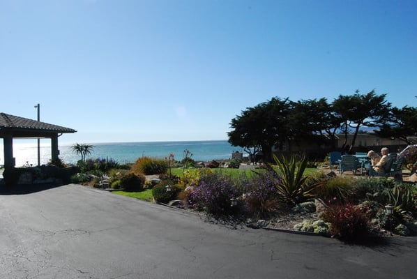 Cambria Dog Friendly Hotels