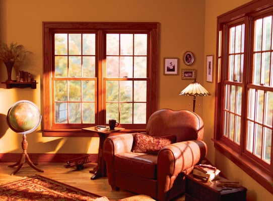 Colonial style double hung windows with interior stainable for Colonial windows and doors