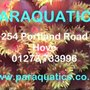Paraquatics Aquarium & Pond Supplies