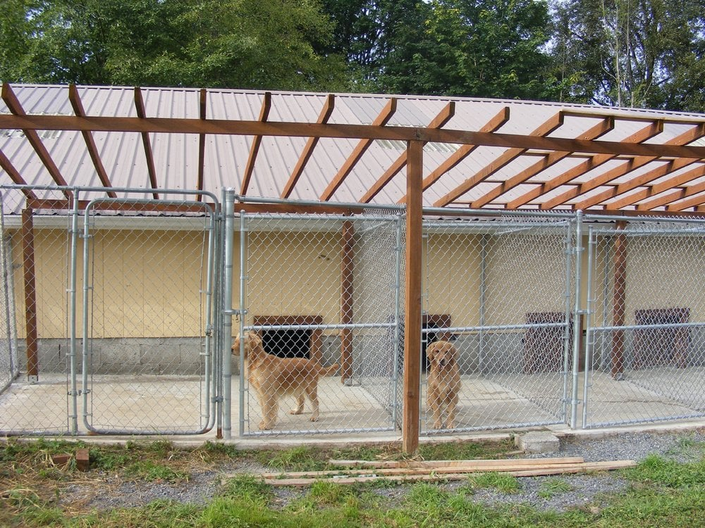 covered outdoor dog kennels with play yard connection yelp With outside covered dog kennels