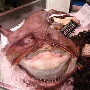 Talk about an ugly looking fish!!! But it sure tastes good!