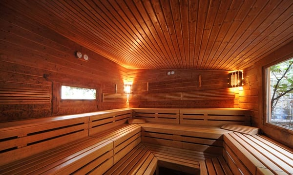 Single sauna berlin