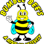 Bumble Bee's Soft Play