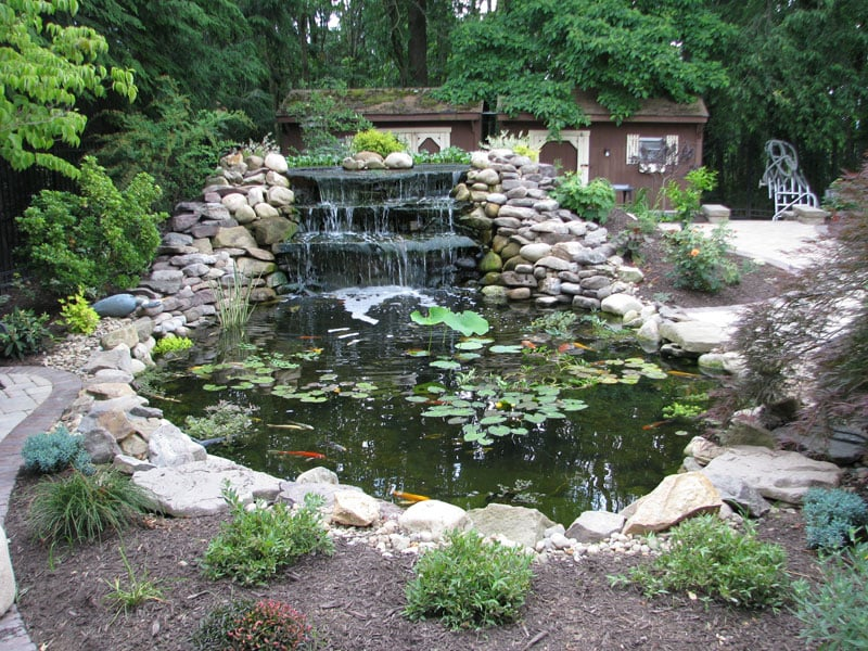 Pond And Waterfall Landscape Design Yelp