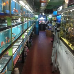 Aquarium store nyc new york grand opening reveals a for Fishing store nyc