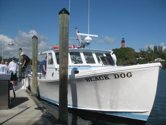 Black dog drift fishing charters boating jupiter fl for Fishing charters jupiter fl