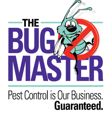 Austin's Premier Pest Control Company: An Interview with The Bug Master