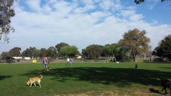 Friends Of Kearny Mesa Dog Park