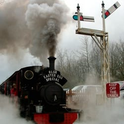 Special steam trains run at easter for kids