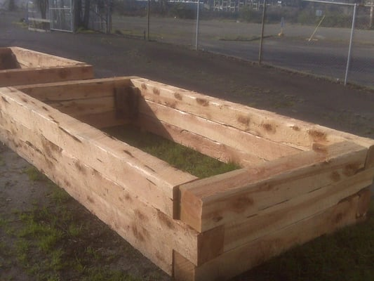 home depot treated landscape timbers with Dunn Lumber Bellevue on 100071059 in addition 8 Ft White Pine Landscape Timber EdgingTIWP522 as well Masterworklandscapes additionally 05 moreover 280489883014988758.