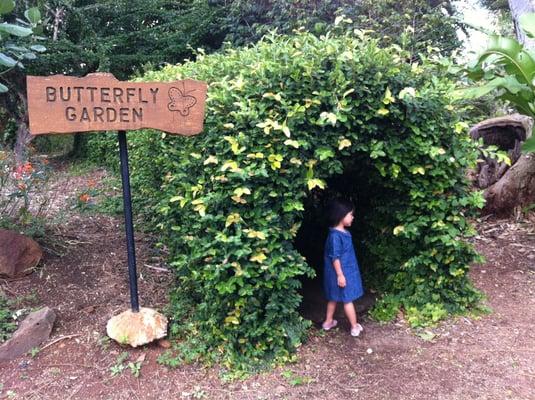 Butterfly Garden Yelp