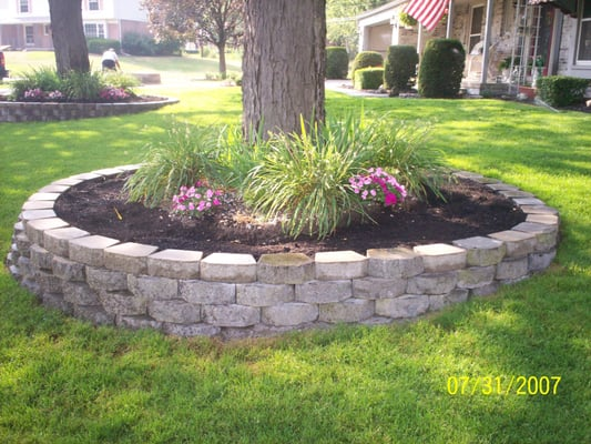Rock Landscaping Under Trees : Garden wall around trees with peet an flowers yelp