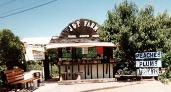 J Amp P Farms Fruit Stand San Jose Ca Yelp
